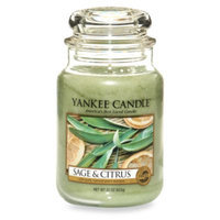 Yankee Candle Sage & Citrus Large Classic Jar Candle