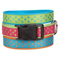 East Side Collection East Side Polka Dot Dog Collar 14 to 20in Green