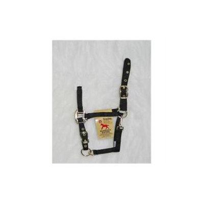 Hamilton Halter Company - Adjustable Chin Halter With Snap- Black Weanling - 3DAS WNBK