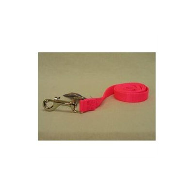 Hamilton Pet Products Single Thick Nylon Lead with Snap in Pink