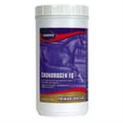 Kinetic Technologies LLC Chondrogen Eq Powder, 75 oz.