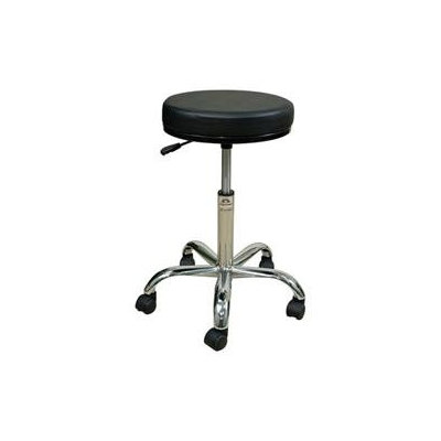 Oakworks Professional Stool with Round Swivel Seat Color: Blue grass