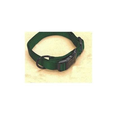 Hamilton Pet Products Adjustable Dog Collar in Hunter Green