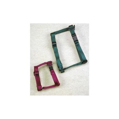 Hamilton Pet Products Adjustable Comfort Dog Harness in Hunter Green