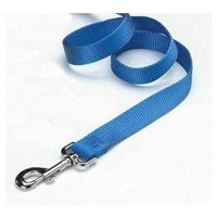Hamilton 6 Ft Nylon Dog Lead With Snap Berry