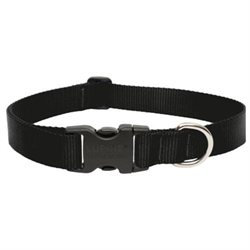 Lupine Adjustable Dog Collar - Black - 1 x 12-20 in