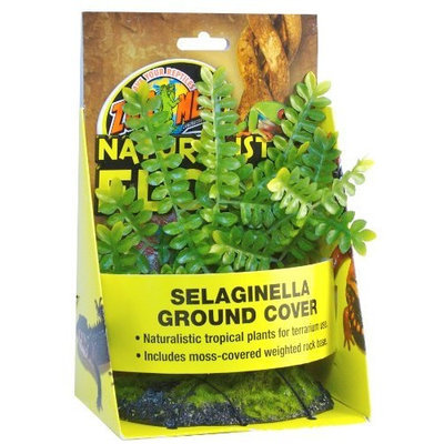 Zoo Med Naturalistic Flora Selaginella Ground Cover
