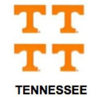 Innovative Adhesives BC-12 University of Tennessee Fan-A-Peel Temporary Tattoo-Sticker
