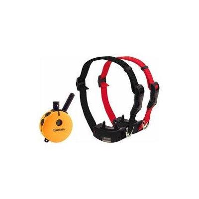 Petstoresusa Einstein Medium/Large 2 Dog Remote Education Collar with Night Tracking Light