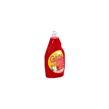 Gain Dishwashing Liquid Apple Berry Twist 24 oz