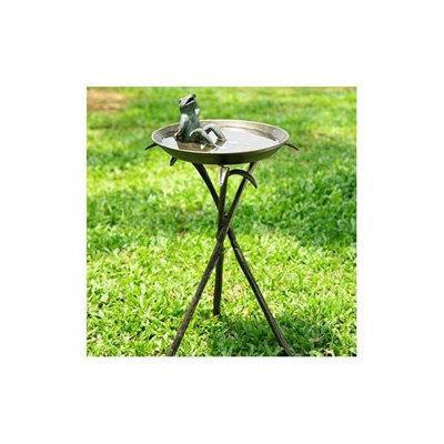 SPI Home 33563 Bronze Cool Frog Birdbath