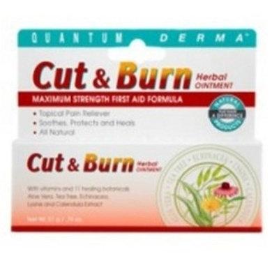 Quantum Derma, Cut & Burn Ointment, 21 Grams (Pack of 3)