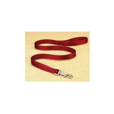 Hamilton Pet Company - Double Thick Nylon Lead- Red 1 X 6 - DLO 6RD