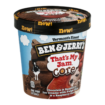 Ben & Jerry's That's My Jam Core Ice Cream Chocolate & Raspberry