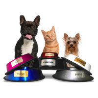 Platinum Pets Personalized Pet Bowl