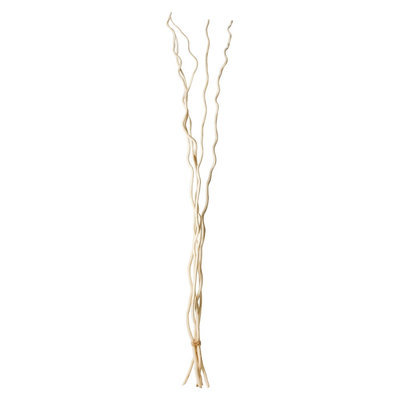 Natural Products Export Indoor Garden Unit: Mitsumata Branch: White