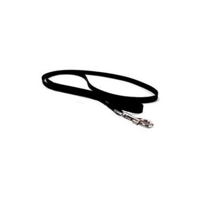 Hamilton Pet Company - Single Thick Nylon Lead- Black .63 X 4 - SLF 4BK
