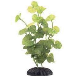 RC Hagen PP187 Marina Hydrocotyle Leucocephala 8 in. silk decorative plant