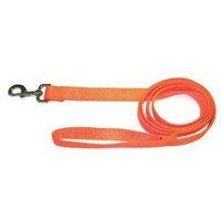 Hamilton Pet Company Hamilton Pet Products Single Thick Nylon Lead with Snap in Orange