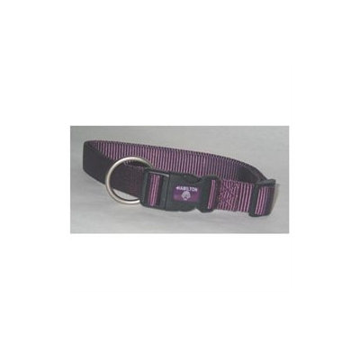 Hamilton Pet Products Adjustable Dog Collar in Purple