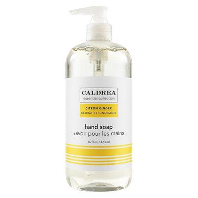 CALDREA COL HD SOAP CTRN GING 16OZ