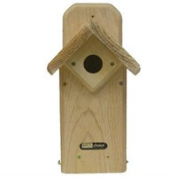 Backyard Nature Products Birds Choice WCEB Eastern Winged Bluebird House