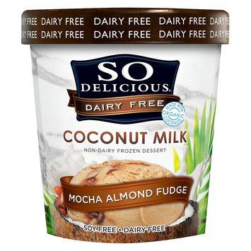 Gale Hayman So Delicious Coconut Milk Mocha Almond Fudge Frozen Dessert 16 oz