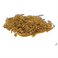 Imperial Cat 00120 Easy Grow Oat Seed - 4 oz.