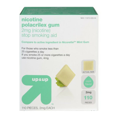 Up & Up Nicotine Gum 110-pk. - Mint (2 mg)