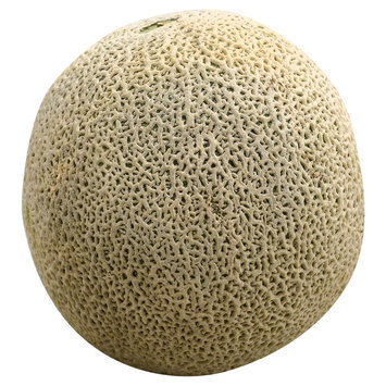 C & S Wholesale Grocers Cantaloupe Melon