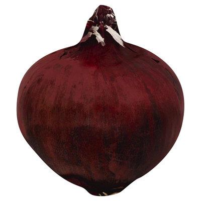 Potandon Produce Llc Red Onion per LB
