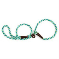 Mendota Twist Slip Leash in Seafoam