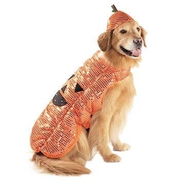 Boots & Barkley Pumpkin Plush Pet Costume X-Large