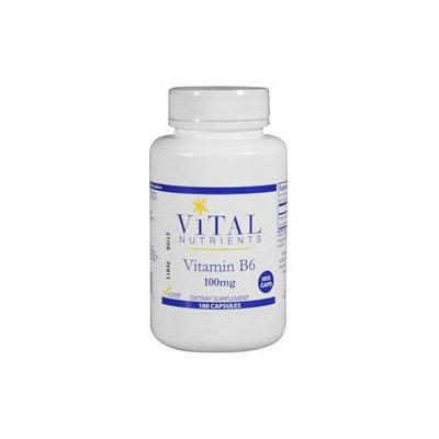 Vital Nutrient's Vital Nutrients - Vitamin B6 100 mg. - 100 Vegetarian Capsules