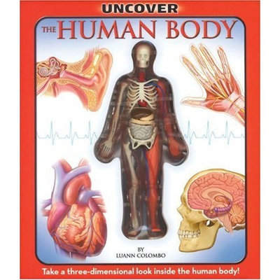 Uncover the Human Body: An Uncover It Book