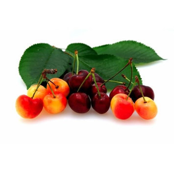 Bellindora Vinegar 900101 Balsamic Cherry - Pack of 3