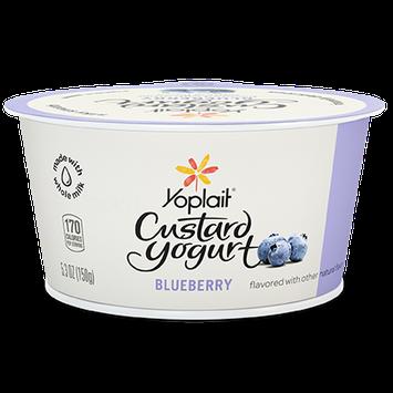 Yoplait® Custard Yogurt Blueberry