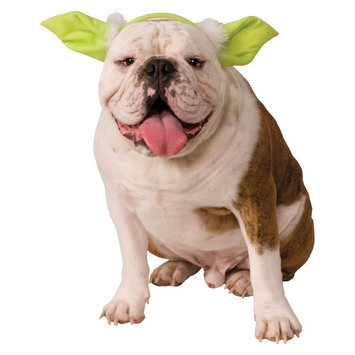 Star Wars Yoda Dog Headpiece Pet Costume - Medium