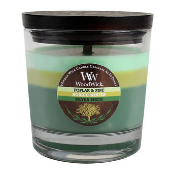WoodWick 10 1/2-oz. Poplar & Pine, Nordic Winter & Silver Birch Soy Jar Candle (Green)