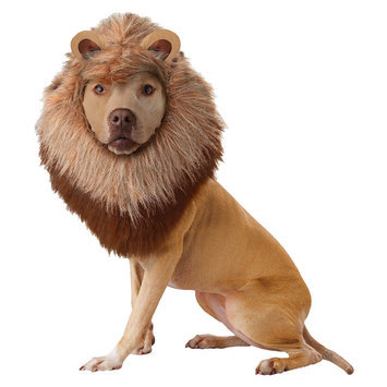California Costume Collections Lion Pet Costume