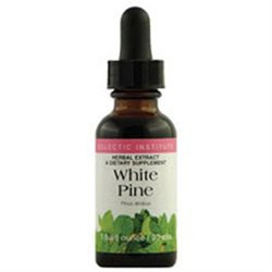 Eclectic Institute White Pine - 1 Ounces Liquid - Other Herbs