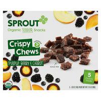 Sprout Organic Crispy Chews - Purple Berry & Carrot .63oz Box