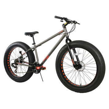 Chitech Men's 7 speed Triax Fat Tire Bike - Grey (26