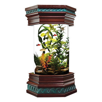 Royal Pet Products Ocean Treasures Executive Aquarium Kit - 6 gal.