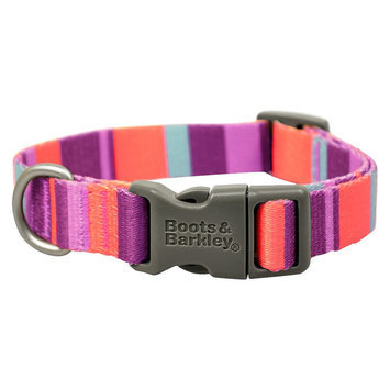 Boots & Barkley Active Stripe Collar