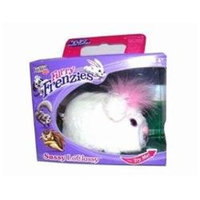 Furreal Friends Hasbro Furreal Cutie Scooties Pet - Sassy LaClassy
