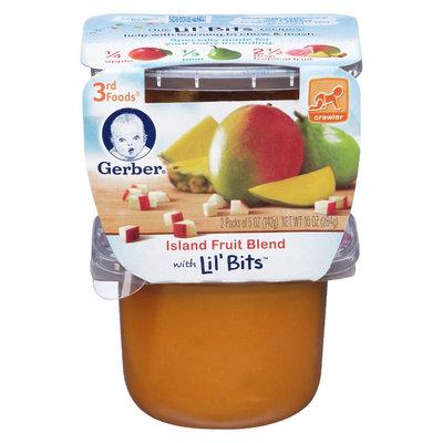 Gerber 3rd Foods Island Fruit Blend - 10oz (6 Pack)