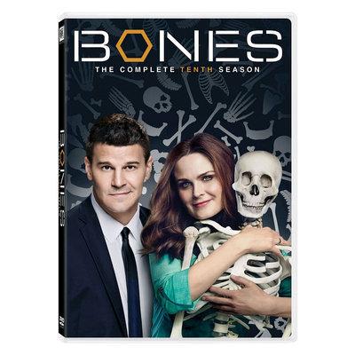 Bones Season 10 (DVD) (DVD)