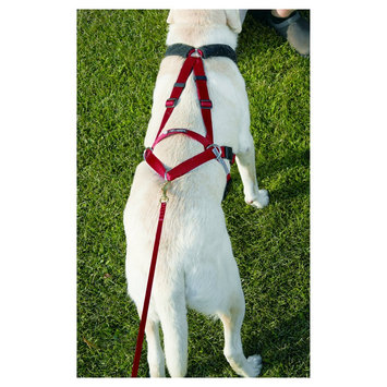 Ultra Paws Dog Harness - Small