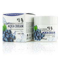 Freeset - Blueberry Fresh Cooling Aqua Cream (Moisture Jelly Type) 50g